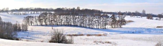 Baum auf dem Schneefeld Lizenzfreie Stockfotos