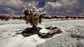 Baum auf der Stra?e und dem alten Auto stockbild