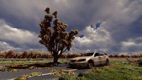 Baum auf der Stra?e und dem alten Auto lizenzfreie stockfotografie