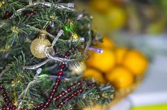 Baum auf einem Hintergrund von Tangerinen am neues Jahr ` s Vorabend Stockbilder