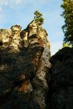 Baum auf einer gezackten Klippe stockbilder