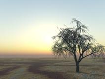Baum auf Horizont lizenzfreie abbildung