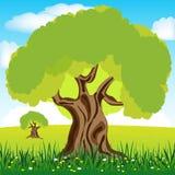 Baum auf Lichtung Lizenzfreie Stockfotografie