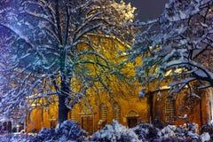 Baum bedeckt mit Schnee und Heiligem Sofia Church Lizenzfreie Stockfotos