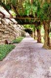 Baum bedeckte Weg des Schicksalsgehwegs Stockbilder
