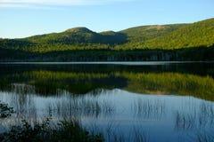Baum bedeckter Berg reflektiert im ruhigen Wasser Stockfotos