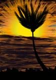 Baum bei Sonnenuntergang Stockfoto
