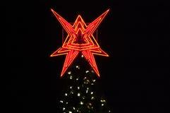 Baum-Beleuchtung Lizenzfreies Stockfoto