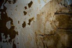 Baum, Braun, Block, Beton, Stellen, Dunkelheit, alt, lose, grau, Ziegelstein, verlassen, errichtend, Schichten und zerbröckeln, Z Lizenzfreie Stockbilder
