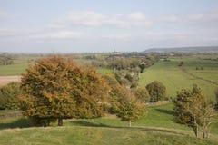 Baum in den Herbstfarben in Somerset England Lizenzfreie Stockbilder