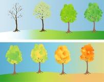 Baum an den verschiedenen Jahreszeiten Lizenzfreie Stockbilder