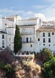 Baum in den vorderen weißen Häusern Stockfoto