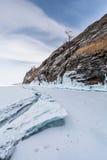 Baum an der Baikal Seeküste Stockfotografie