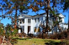 Baum, der am Haus wegen des Hurrikans Michael sich lehnt