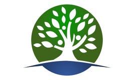 Baum der Leben-heilenden Mitte lizenzfreie abbildung