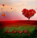 Baum der Liebe im Herbst Geformter Baum des roten Herzens bei Sonnenuntergang Herbst s lizenzfreie stockfotografie