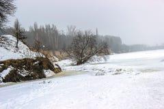Baum, der sich im Winter hinlegt Lizenzfreies Stockfoto