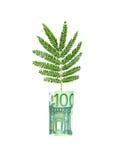 Baum, der von der Eurorechnung wächst Stockfotografie