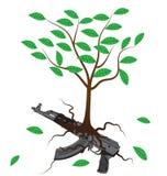 Baum, der von einem Gewehr wächst Stockfoto