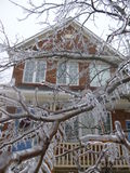 Baum des Eises mit Haus stockfoto