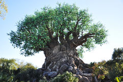 Baum des Lebens im Disney-Tierkönigreich stockbild