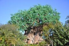 Baum des Lebens im Disney-Tierkönigreich Lizenzfreie Stockbilder