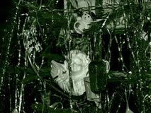 Baum des neuen Jahres in der grünen Monofarbe stockfotos