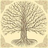 Baum Druidic Yggdrasil, Runde, braunes Logo Gotische alte Buchart stockfoto