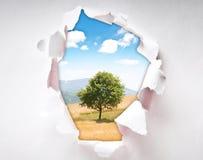 Baum durch Loch im Papier Lizenzfreie Stockfotografie