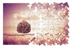 Baum in einem Toskana-Wheatfield in Form des Puzzlespiels - Tusc stockfotografie