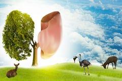 Baum-förmige Bilder des Lungengrüns, medizinische Konzepte, Autopsie, Anzeige 3D und Tiere als Element vektor abbildung
