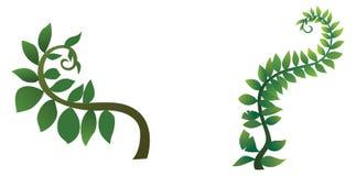 Baum für die Karikatur lokalisiert auf weißem Hintergrund Lizenzfreies Stockbild