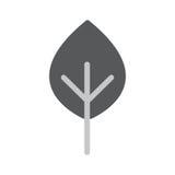 Baum-flache Vektor-Ikone Stockfoto