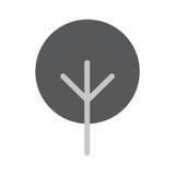 Baum-flache Vektor-Ikone Stockfotos