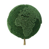 Baum formte als die Erde, die Europa und Afrika gegenüberstellt Lizenzfreies Stockbild