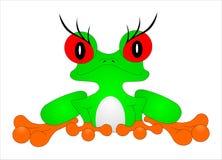 Baum-Frosch stock abbildung