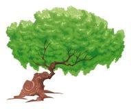 Baum, getrennte Nachricht. Lizenzfreie Stockfotos