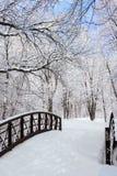 Winterszene mit Brücke lizenzfreies stockbild