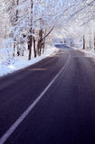 Baum gezeichnete Straße im Winter Lizenzfreies Stockfoto
