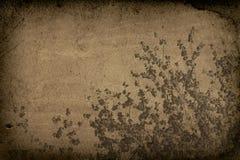 Baum-Glied Grunge Hintergrund Lizenzfreies Stockbild