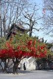 Baum hängt viel rote Liste Stockfotografie