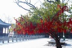 Baum hängt viel rote Liste Lizenzfreies Stockfoto