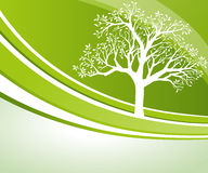 Baum-Hintergrund vektor abbildung