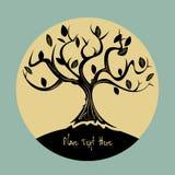 Baum-Hintergrund Stockfoto