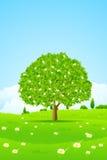 Baum-Hintergrund lizenzfreie abbildung