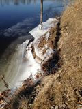 Baum im Eis Lizenzfreie Stockbilder