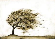 Baum im Herbststurm Stockfoto
