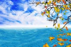Baum im Vordergrund mit fallenden Blättern Lizenzfreies Stockbild