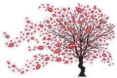 Baum im Wind mit fallenden Blättern Stockfoto