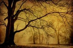 Baum im Winter ohne Blätter auf Braun Stockfotografie